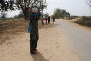 A woman carrying water from the local pump near the village in Chuddani, India.